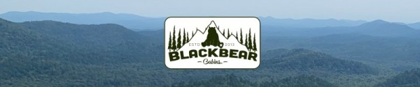 Black Bear Cabins - Mena